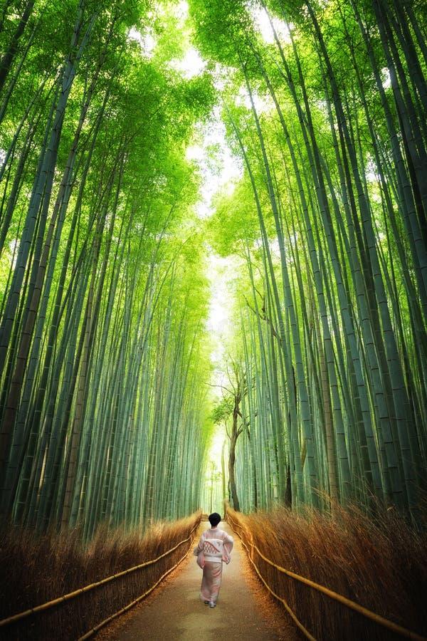 Geisha, die durch die Bambuswaldung Kyoto geht lizenzfreie stockfotos