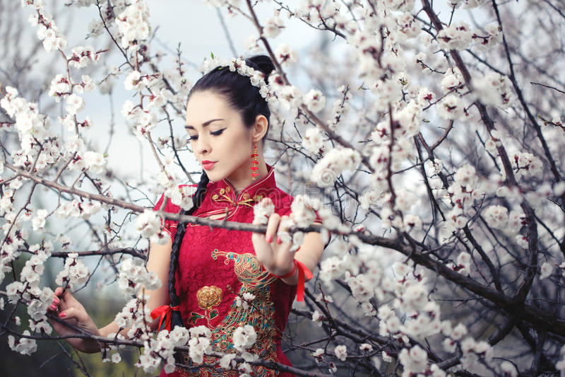 Geisha i röd kimono i sakura arkivbild