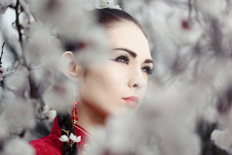 Geisha i röd kimono i sakura arkivfoto