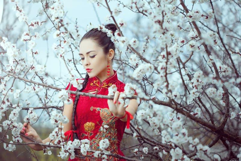 Geisha i r?d kimono i sakura arkivbild