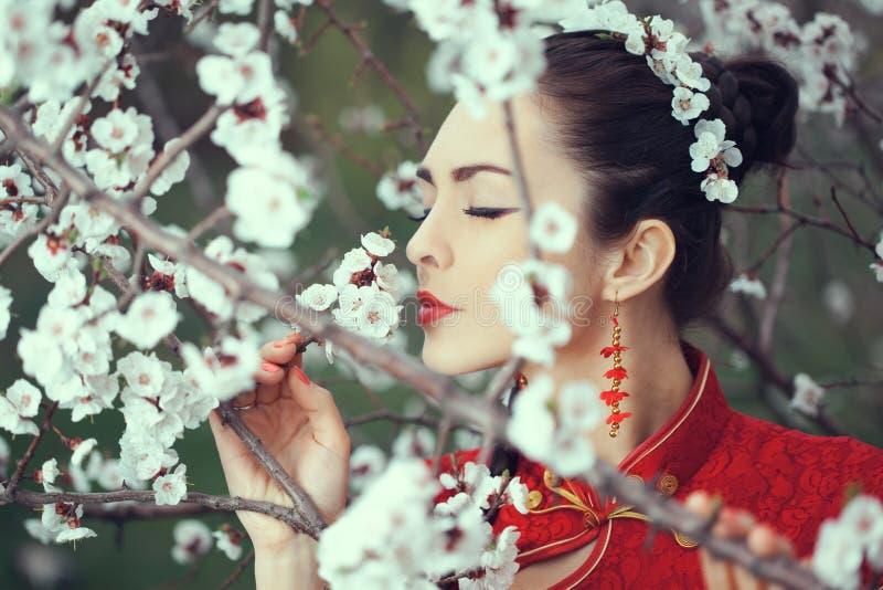 Geisha i r?d kimono i sakura royaltyfri fotografi