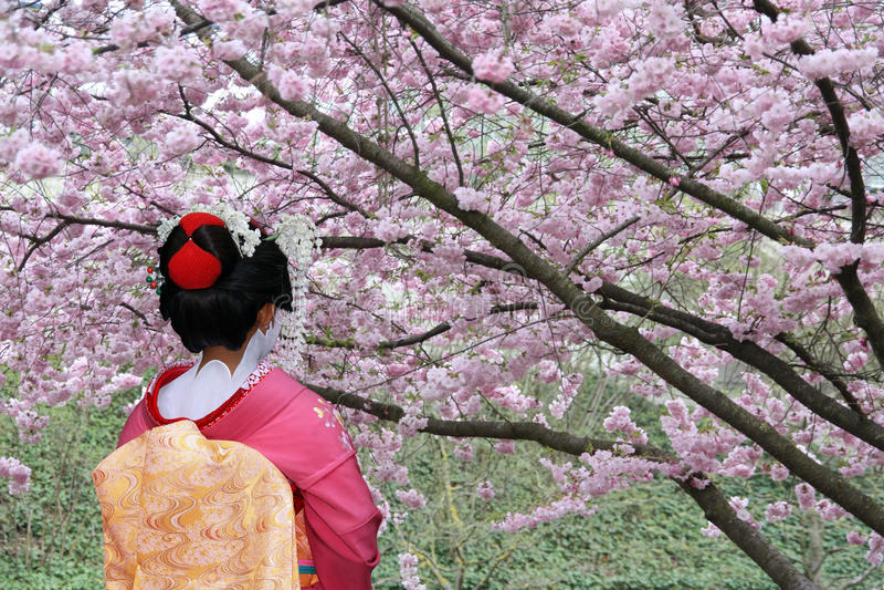 Geisha japonais photographie stock libre de droits