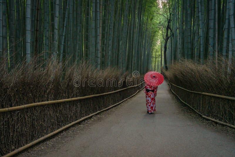 Geisha mit Regenschirm in Bambuswald Arashiyama stockfotos