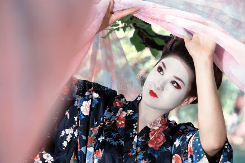 Geisha soulevant les rideaux roses photographie stock