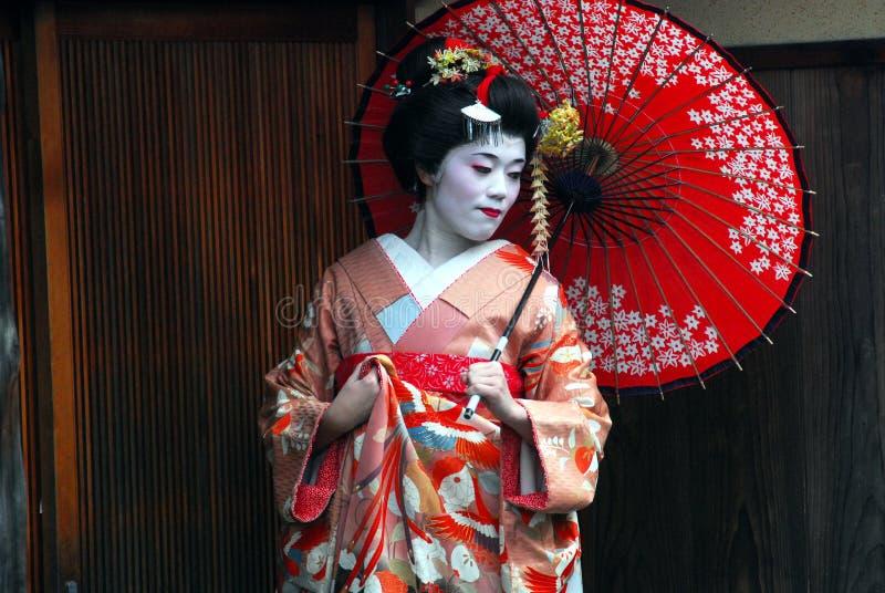 Geishaerfarenhet arkivbilder