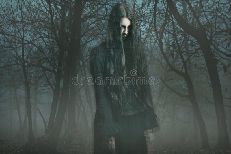 Geist im Nebel stockfoto