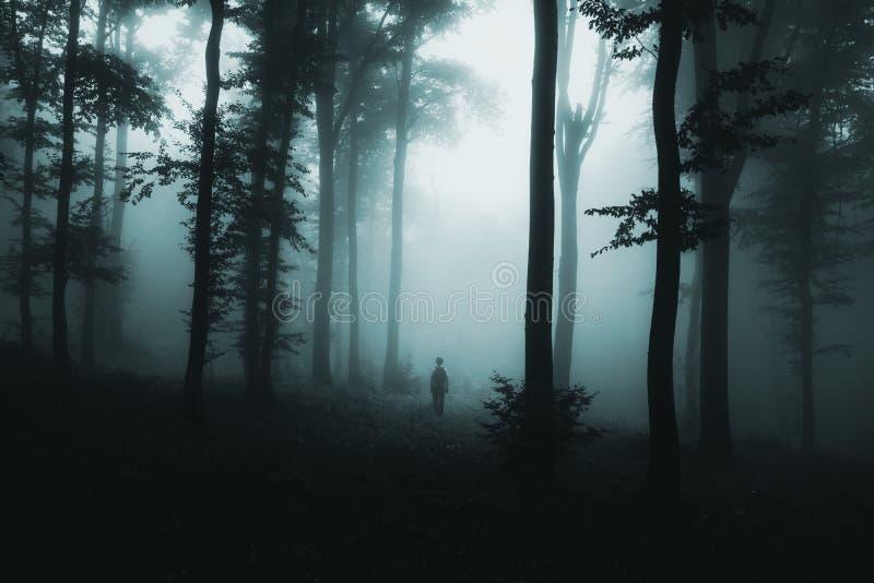 Geist im Nebel im dunklen gespenstischen Holz lizenzfreie stockbilder