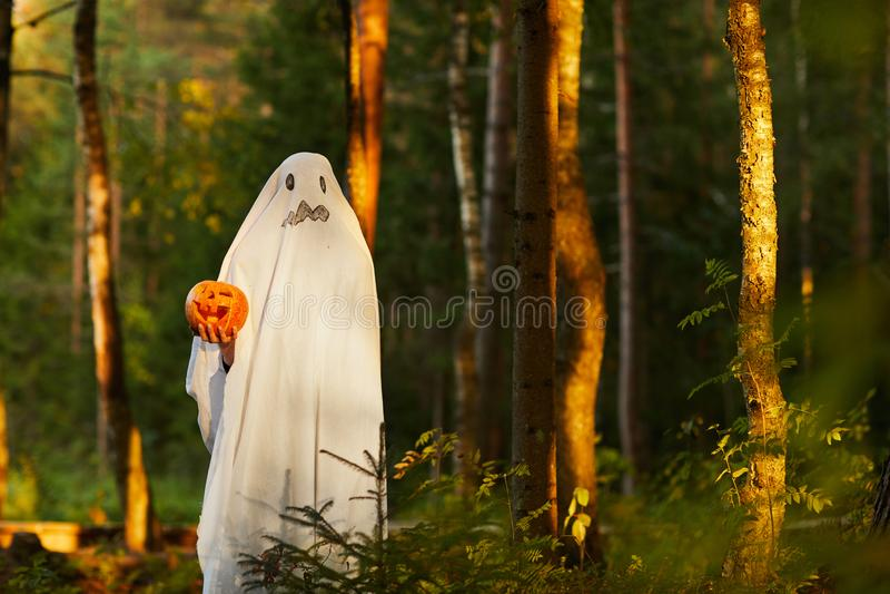 Geist in Wald bei Sonnenuntergang lizenzfreie stockfotografie