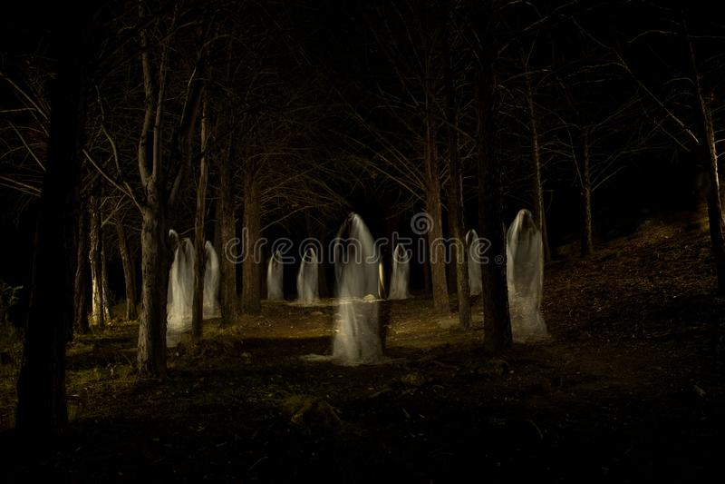 Geistfamilie im dunklen Wald lizenzfreie stockfotografie