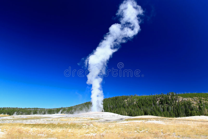 gejzer stary Yellowstone wierny obrazy royalty free