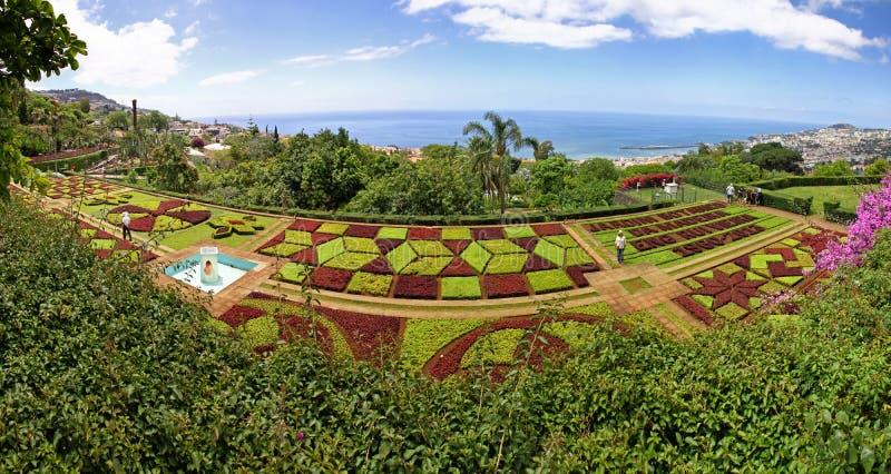 Gek panorama van Tropische Botanische Tuin in de stad van Funchal, royalty-vrije stock fotografie