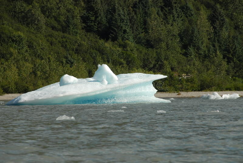 Gekalbtes Eis vom Mendenhall Gletscher, Juneau, Alaska stockbilder