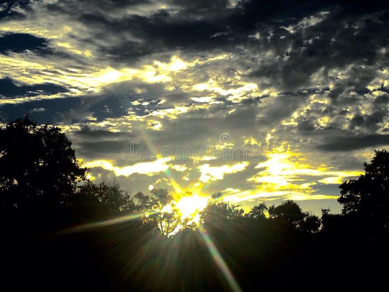 Gekke zon stock afbeeldingen
