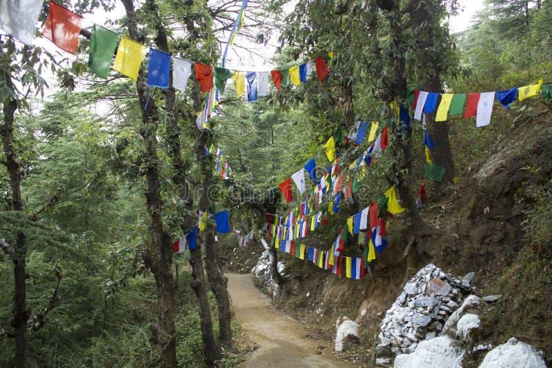 Gekleurde Boeddhistische vlaggen met mantras royalty-vrije stock foto's