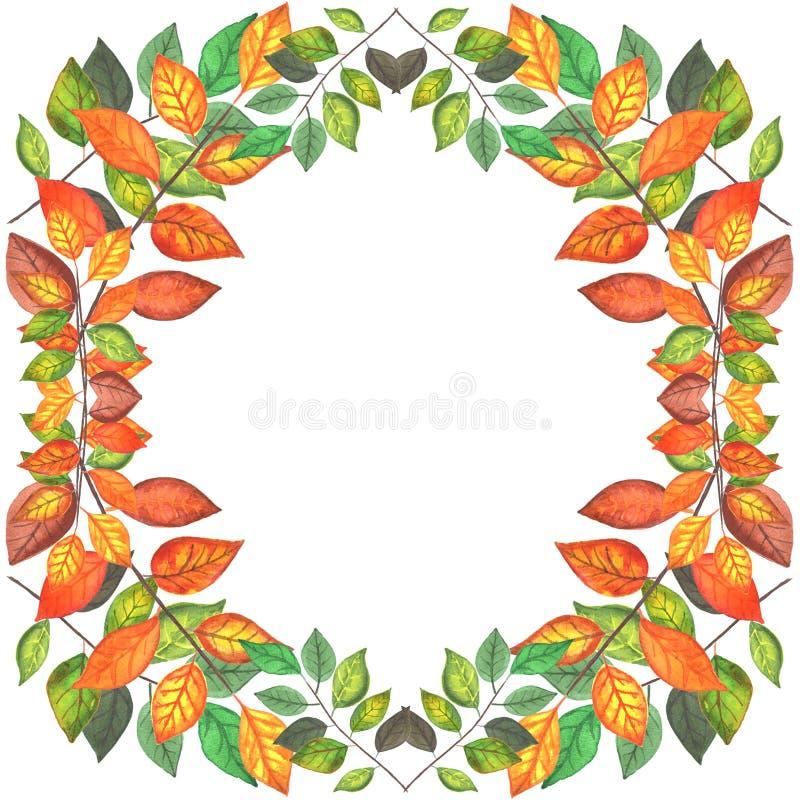 Gekleurde de herfst vertakt zich grens stock illustratie