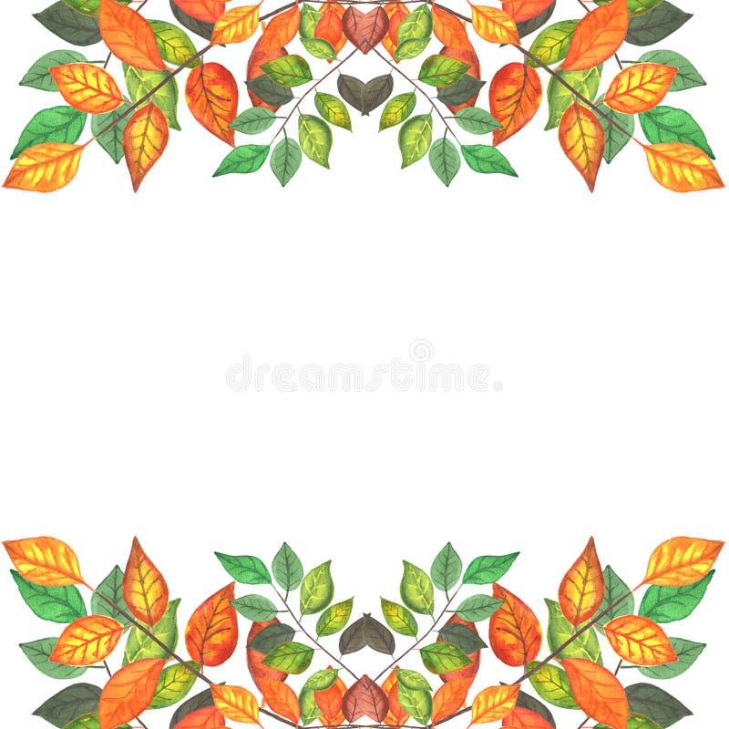 Gekleurde de herfst vertakt zich grens 3 stock illustratie