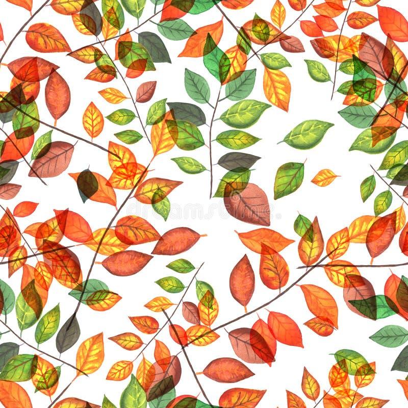 Gekleurde de herfst vertakt zich patroon royalty-vrije illustratie