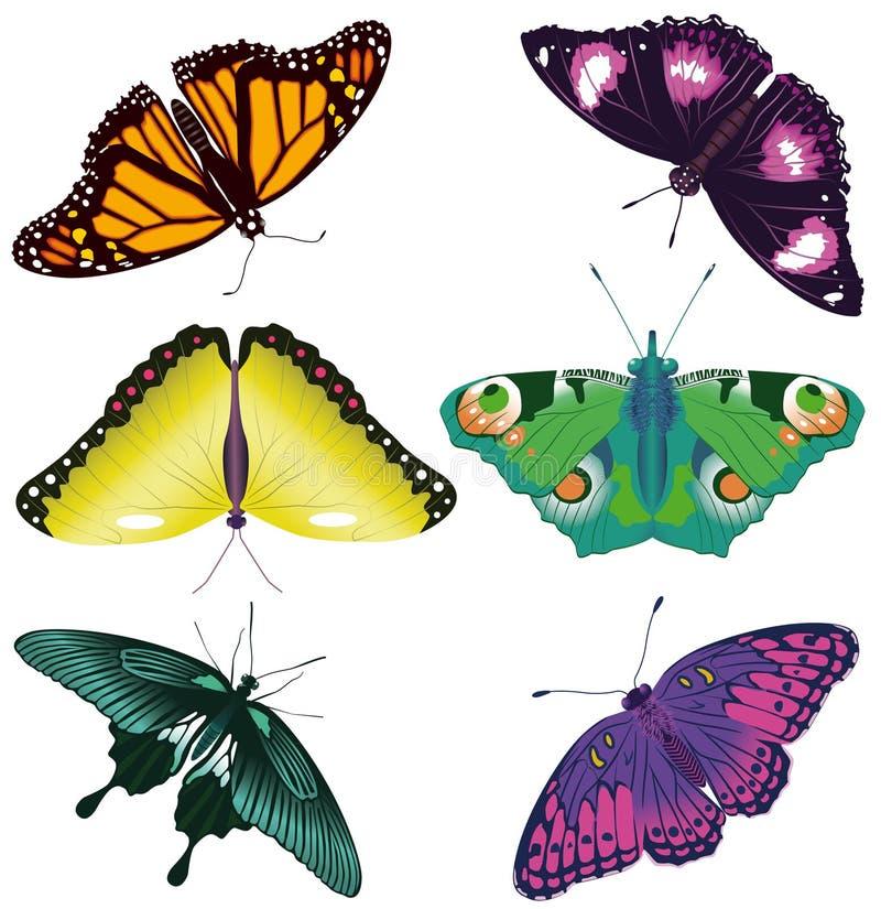 Gekleurde geplaatste vlinders royalty-vrije stock afbeeldingen