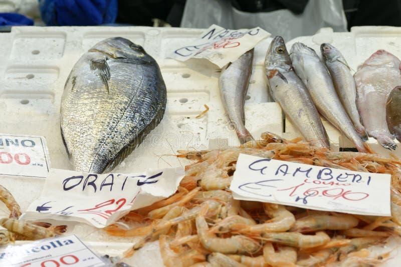 Gekleurde vissen stock foto's