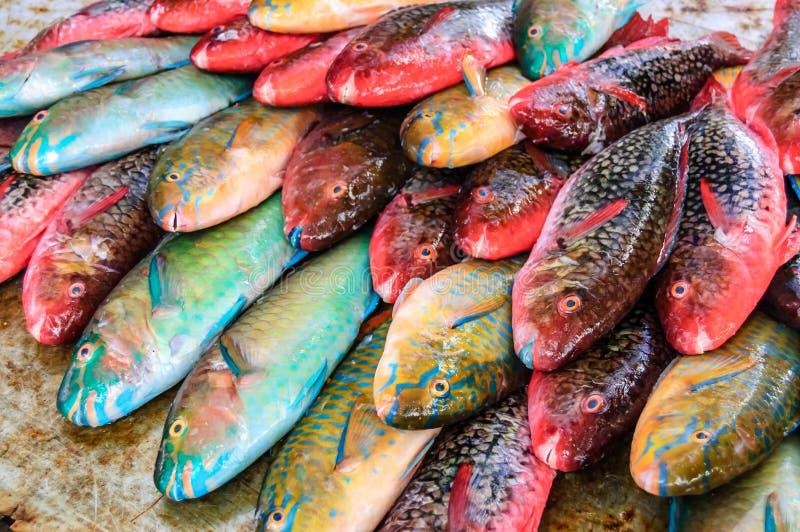 Gekleurde vissen bij de marktkraam royalty-vrije stock foto's