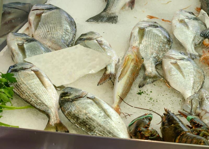 Gekleurde vissen bij markt royalty-vrije stock afbeelding