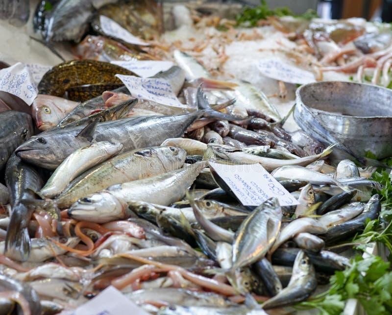 Gekleurde vissen bij markt royalty-vrije stock foto's