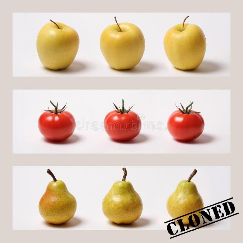 Gekloonde vruchten en groenten?! stock afbeelding