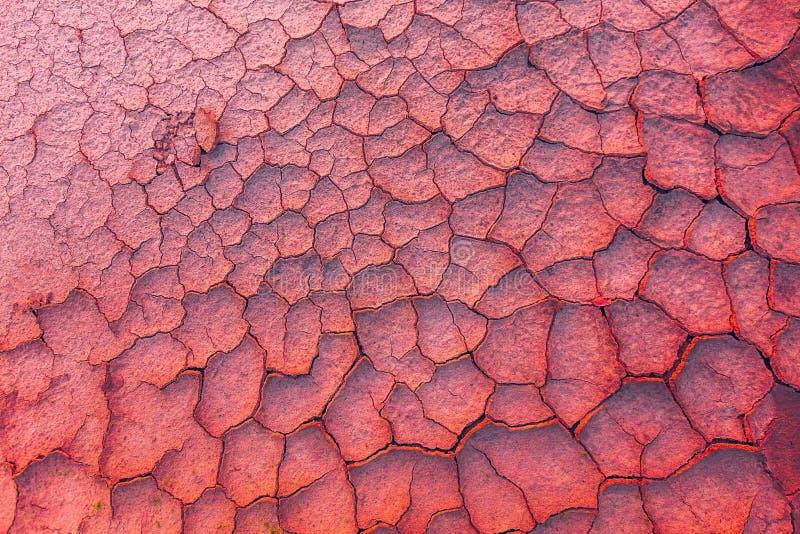 Geknackte Erde, metaphorisch für Klimawandel und die globale Erwärmung lizenzfreie stockbilder