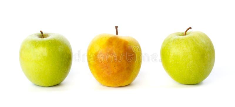 Gekneuste appel tussen twee gezonde appelen stock afbeelding
