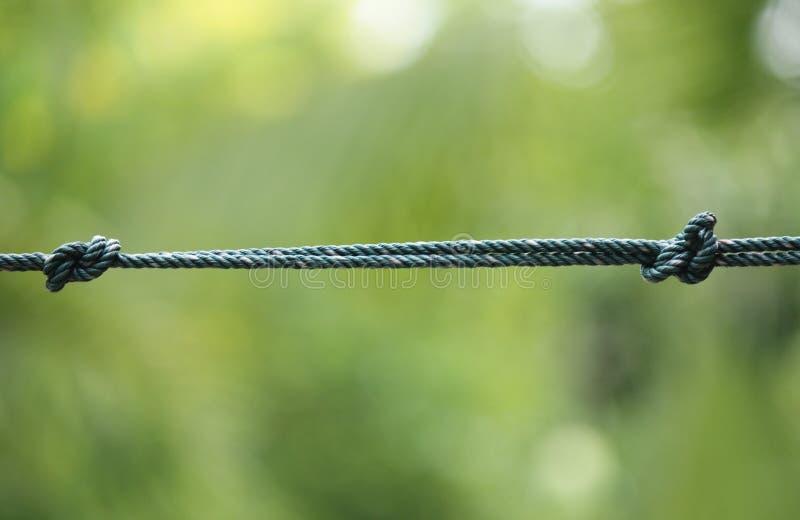 Geknotete Seile stockfoto