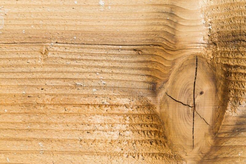 Geknotetes Holz lizenzfreie stockfotografie