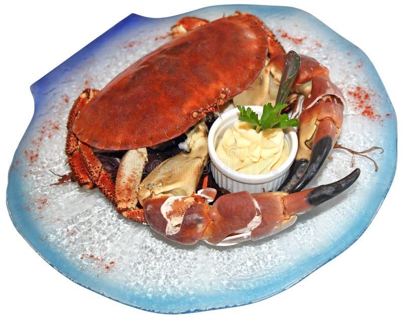Gekochte Krabbe lizenzfreie stockfotografie