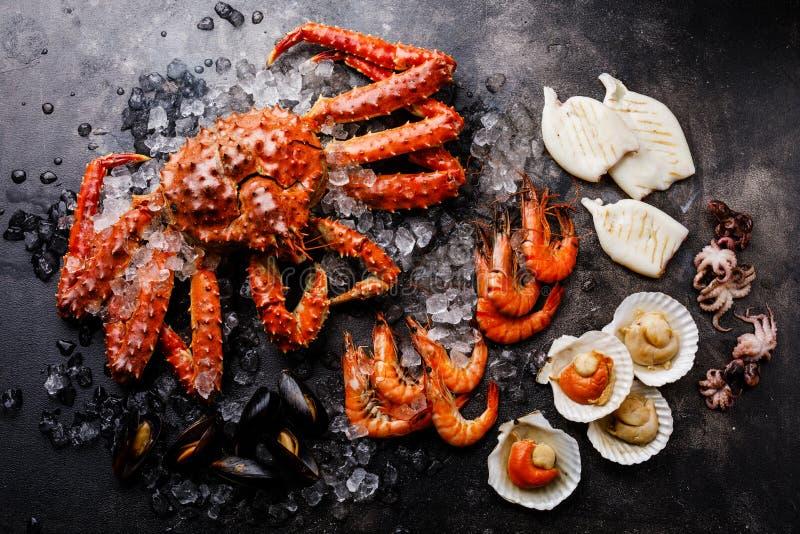 Gekochte Meeresfrüchte auf Eis - Krabbe, Garnele, Muscheln, Kamm-Muscheln stockbilder