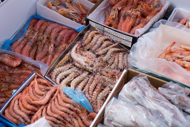 Gekoelde Mediterrane zeevruchten dicht omhoog op teller royalty-vrije stock foto's