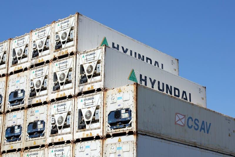 Gekoelde verschepende containers royalty-vrije stock afbeelding