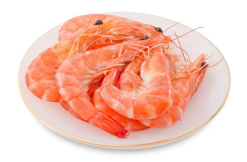 Gekookt Garnalen of Tiger Shrimps in Witte Plaat royalty-vrije stock afbeelding
