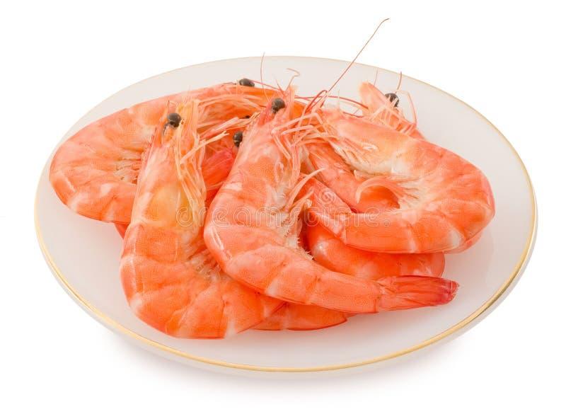 Gekookt Garnalen of Tiger Shrimps in Witte Plaat royalty-vrije stock foto