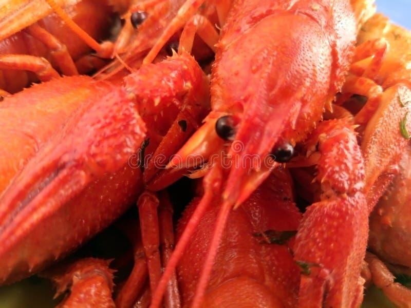 Gekookt rivierkreeftenvoedsel, gekookte zeevruchten, diner, rode maaltijd, stock foto's