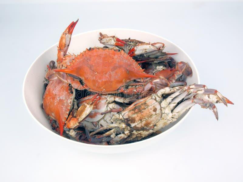Gekookte blauwe krabben in kom stock afbeeldingen