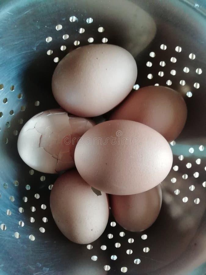 Gekookte eieren in een kom royalty-vrije stock fotografie