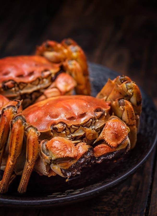 Gekookte harige krabben royalty-vrije stock fotografie