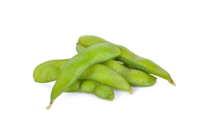 Gekookte Japanse groene sojabonen op witte achtergrond royalty-vrije stock afbeelding