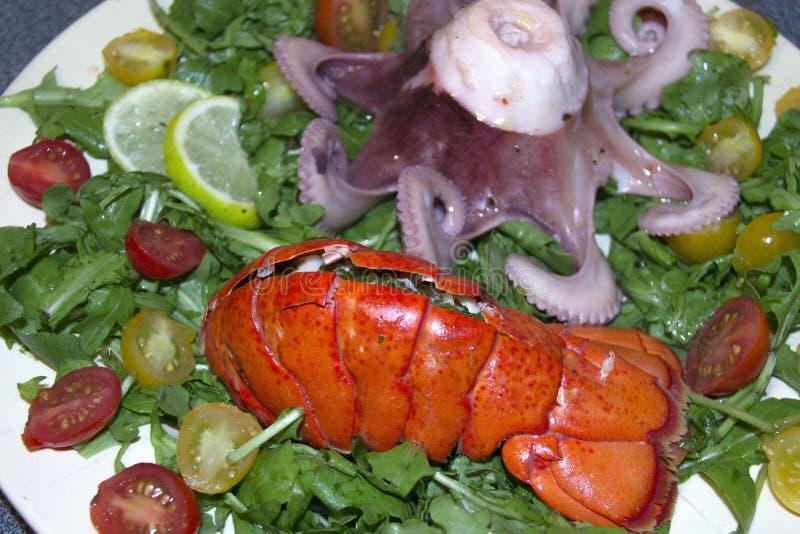 Gekookte zeekreeft en octopus met salade royalty-vrije stock afbeelding