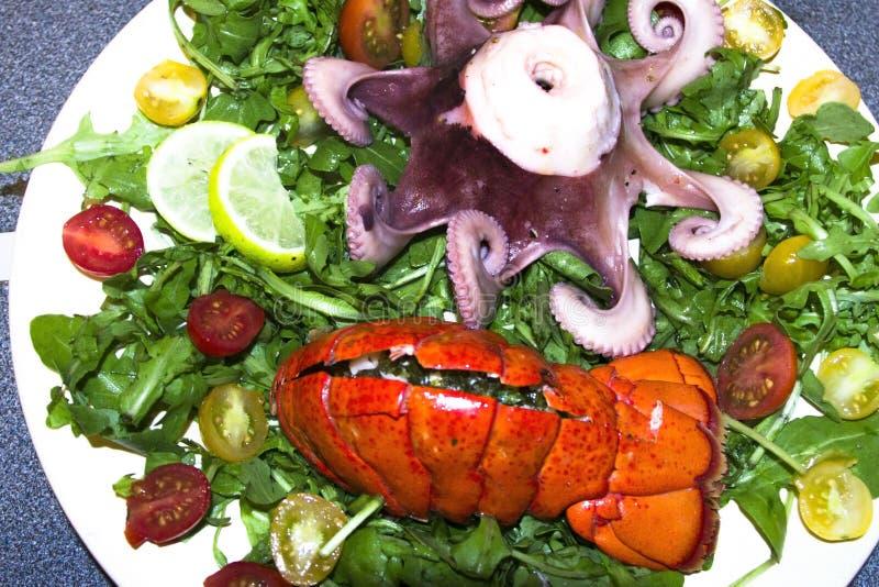 Gekookte zeekreeft en octopus met salade royalty-vrije stock foto