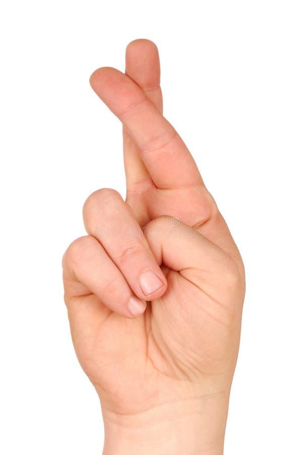 Gekreuzte Finger stockfotos