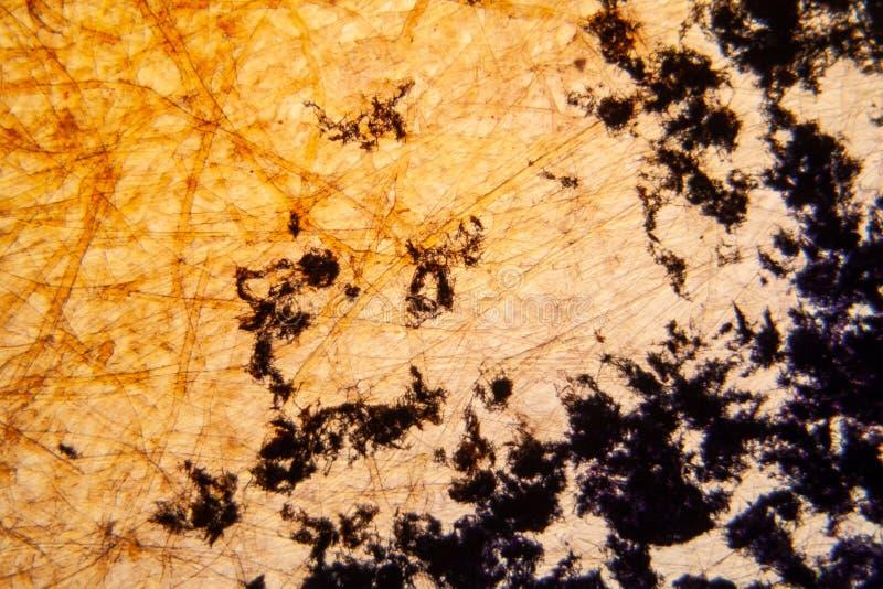 Gekristalliseerd Methilene-blauw op document textuur stock fotografie