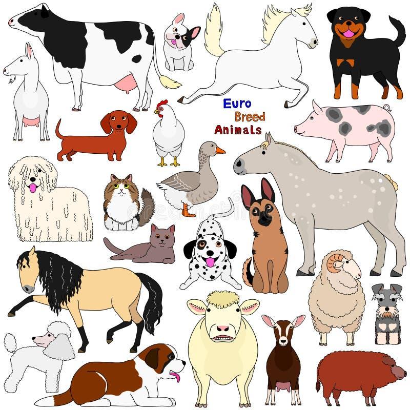 Gekritzel von Haustieren der europäischen Zucht lizenzfreie abbildung