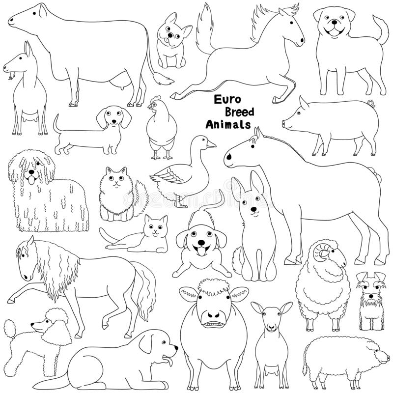 Gekritzel von Haustieren der europäischen Zucht vektor abbildung