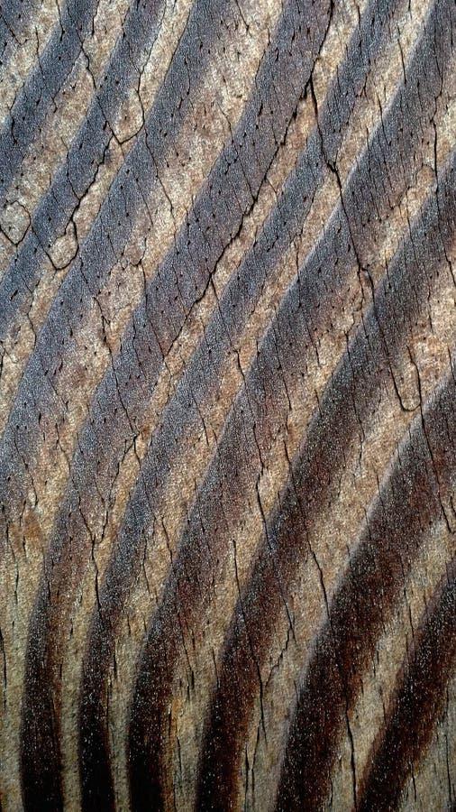 Gekruide Houten Textuur stock fotografie