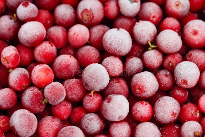  gelé de Ñ owberry photo libre de droits